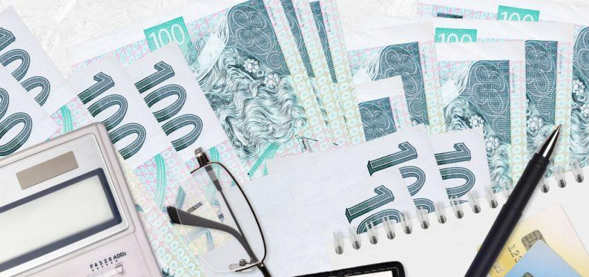 100-one-hundred-korun-sto-czech-koruna-czk-haler-republic-money-accountant-account-tax-refund-income_t20_E0amwJ
