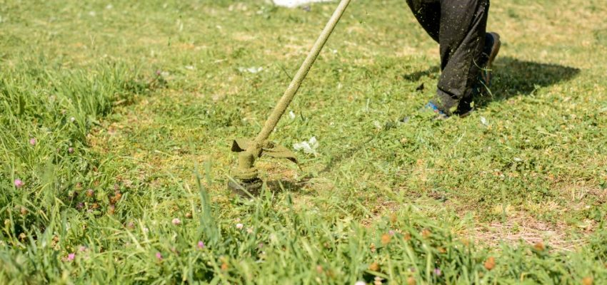 a-man-with-a-lawn-mower-mows-the-grass-garden-gardener-spring-man-outdoor-mow-male-person-nature-care_t20_wQ8Ogr