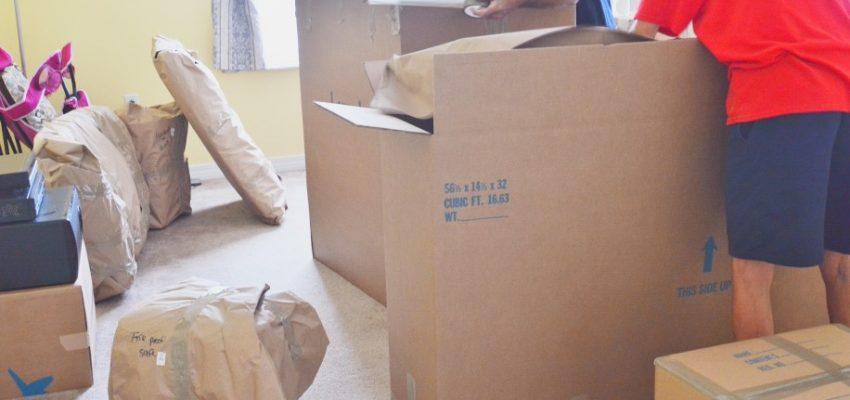 moving-day_t20_JaYbz9